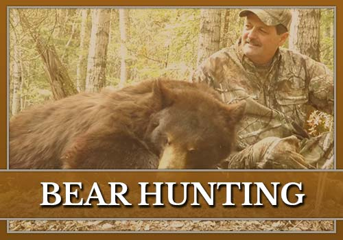 Bear Hunting with Misty River Outfitters